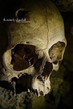 august scenes gallery trophy winner! skull by adam skutt, Skeleton