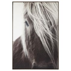 Horse Printed Framed Art