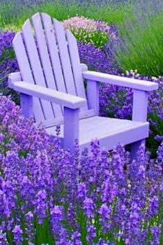 ~ lavender heaven ~ Lavender painted garden accents are soothing and stand out in the garden year-round.