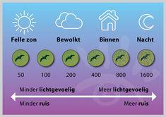 Een schema om de de ISO en de lichtgevoeligheid waarde te bepalen met verschillende weer types. Lichtgevoeligheid (ISO-waarde) geeft aan hoeveel licht er nodig is voor een bepaalde belichting, bij een hoge ISO-waarde krijg je namelijk last van ruis in je foto's.