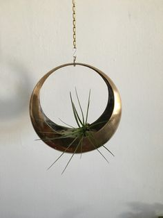 Mid-century modern brass hanging planter from Air Plants, Indoor Plants, Home Deco, Metal Plant Hangers, Pot Jardin, Terrariums, Hanging Planters, Hanging Basket, Hollywood Regency