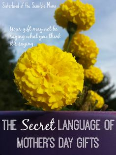 The Secret Language of Mother's Day Gifts - Your gift may not be saying what you think it's saying!  Parenting Humor  Sisterhood of the Sensible Moms