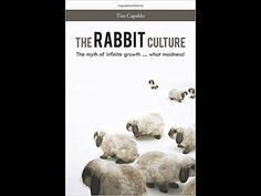 Novel Transcript: THE RABBIT CULTURE, by Tito Capaldo | Novel Writing Festival
