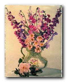 16x20 Beautiful Orchid Pink Flowers Floral Wall Decor Art Print Poster