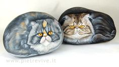 Hand painted rock.Cat Portraits on stone. persians
