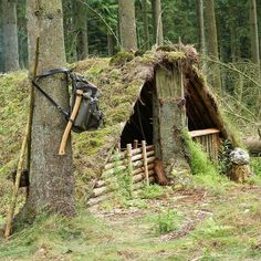 Back at the double shelter with a buddy, planning to build an end on the shelter. #naturalshelter #leanto #primitive #bushcraft #moss