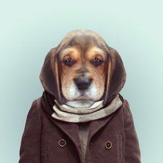 PUPPY DOG byYago PartalforZOO PORTRAITS