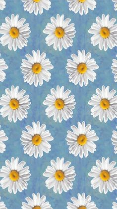 Imagine flowers, wallpaper, and daisy Daisy Wallpaper, Cute Patterns Wallpaper, Iphone Background Wallpaper, Daisy Background, Background Patterns, Cute Backgrounds, Aesthetic Backgrounds, Aesthetic Wallpapers, Phone Backgrounds