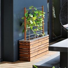 Modern ogende plantenbak, met een diepte van slechts 30 cm, uitermate geschikt voor op een kleine ruimte zoals een balkon of binnenkoer.