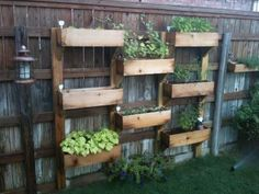 Liven up a plain fence with planters. Made from recycled pallets?