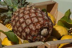Abacaxi, Fruta, Limões