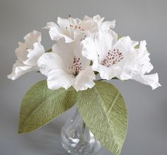 White Azaleas. Made from crepe paper. The Flower and Craft Boutique.