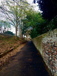 Outdoor walk #chichester