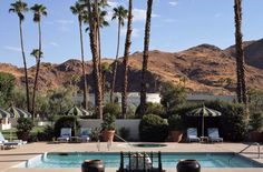 Pool. The Parker Palm Springs. Imagine a desert estate where luxury is fun. By Hotelied.
