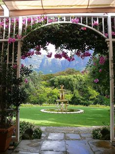 Vineyard Hotel, Newlands, Cape Town So central in its location, but a soothing oasis once you enter its extensive gardens. The terrace has one of the best views in all the Cape....