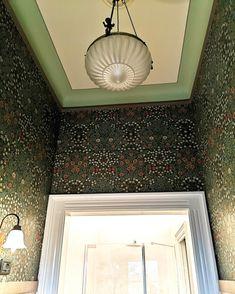 Wallpaper Sharon shades of green