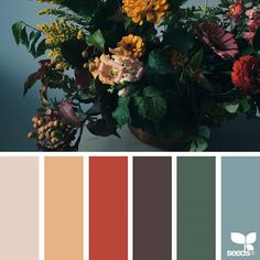 today's inspiration image for { flora palette } is by @theflowercult ... thank you, Kyla, for sharing your gorgeous photo in #SeedsColor !
