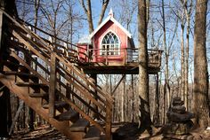 Animal planet/treehouses | ... It's a Treehouse. It's a Brewery. It's The Treehouse Brewing Company