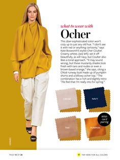 Ocher with pumpkin, rust, olive green, dark golden brown or dark red brown. A tonal approach, 2 colours, possibly add a 3rd near the face/ accent.