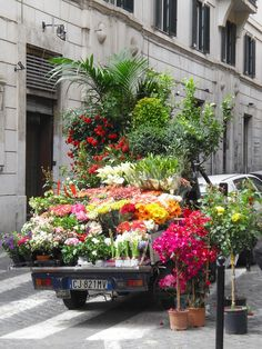 Street flowers-Rome, Italy, European Union | Flickr - Photo Sharing!  This looks like the Roman version of our business:):)  Lots more attractive than the Penske trucks we use.