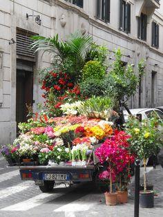 Street flowers-Rome, Italy