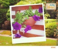 Ficamos apaixonados pela foto do jardim vertical da casa da Barbara Sabrina! <3