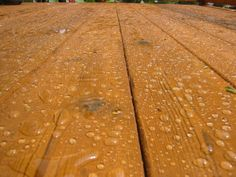 How to Choose a Deck Sealant | Blog | Renew Crew