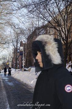 Blizzard 23 Gennaio 2016 Jonas a New York City - Paesaggio magico a Brooklyn