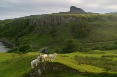Kildonan on the Hebridean island of Eigg with the Sgurr of Eigg, the island's highest point, visible in the background.