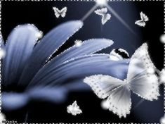 Beautiful Glitter Graphic Woman | Wide Range of Flowers Graphics and Glitters