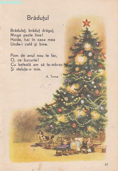 Abecedar 1959 – Un zâmbet de copil… Science Activities For Kids, Toddler Learning Activities, Kindergarten Activities, Educational Activities, Kids Learning, Christmas Deco, Christmas Crafts, Fall Crafts, Crafts For Kids