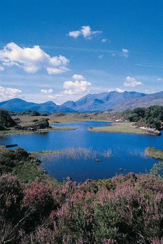 Killarney, Co. Kerry, Ireland.