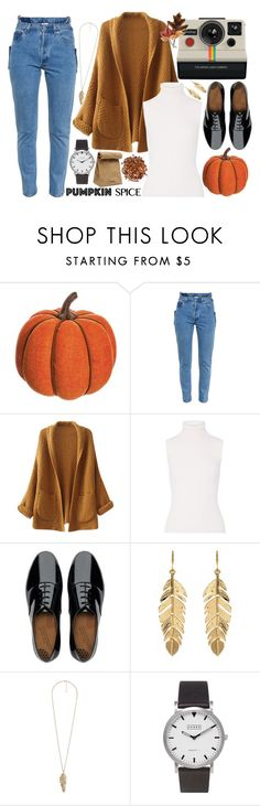"""autumn leaves"" by mayaneluna ❤ liked on Polyvore featuring Allstate Floral, Vetements, Polaroid, Chicnova Fashion, Michael Kors, FitFlop, Jil Sander, Amrita Singh, Forever 21 and Topshop"
