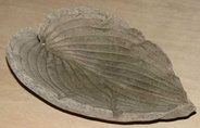"7 Cheap But Beautiful DIY Garden Decor Ideas: Idea 5/7 - Hypertufa Leaf Casting --  Hypertufa is basically fake stone made using Portland cement, sand, vermiculite, perlite, and peat moss. Recipes vary, but you get the idea: the mixture lets you make a lightweight product that can then be molded into shapes and used for casting things like giant elephant ear leaves, which will give you awesome ""stone"" leaves for use as decoration."