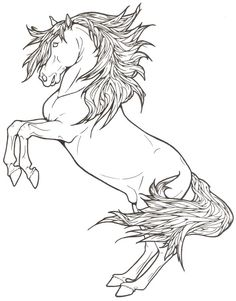 Lipizzan Lineart by ReQuay