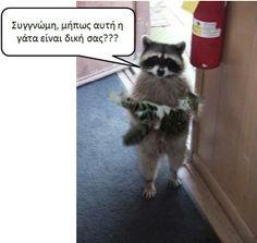 Αναζητειται ο ιδιοκτητης... :P