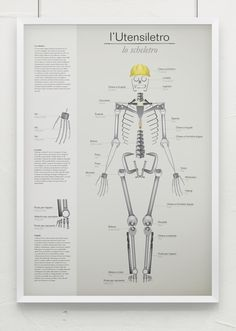 Multipurpose infographic poster Tools/Skeleton