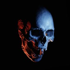Skull Reference, Where Is My Mind, Human Skull, Easy Rider, Dark Fashion, Pictures To Draw, Skull Art, I Tattoo, Sculpting