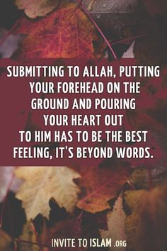 Submitting to Allah, putting your forehead on the ground and pouring your heart out to Him has to be the best feeling, it's beyond words.