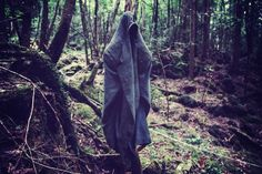 Should you find yourself in Aokigahara forest, stay on the path, and don't listen the trees – no matter how persuasive their words may be.