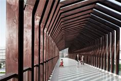 ADARC abstracts forms of houses to shape wooden footbridge in china