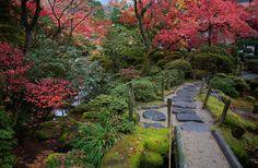 Japanese garden by Sergey Bugrov