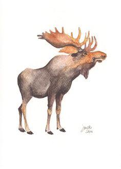 Moose watercolor.