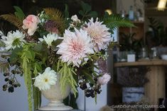 Local Cafe Au Lait Dahlias with Blackberries and Ammi
