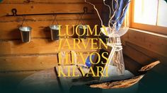 Luomajärven hevoskievari - The Luomajärven Horse Inn specializes in family vacations and horse travel Family Vacations, Small Towns, Beautiful Landscapes, Finland, Countryside, Neon Signs, Horses, Travel, Viajes
