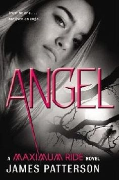 I have this book cover but it wasn't shown with the other Maximum Ride book covers