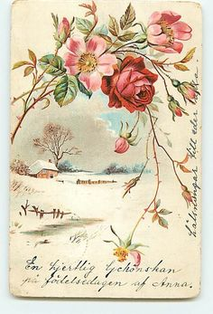 Red Pink Flowers Floral Buds No. 2605 Cottage Snow Nature Swedish Art 1904    http://www.ebay.com/itm/6032-Red-Pink-Flowers-Floral-Buds-No-2605-Cottage-Snow-Nature-Swedish-Art-1904-/360582885771?pt=LH_DefaultDomain_0=item53f46a318b