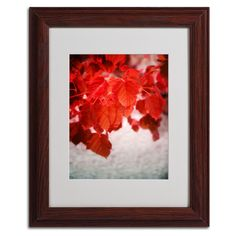 'Red is on' by Philippe Sainte-Laudy Framed Photographic Print