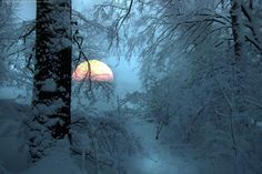 Moonrise in the snow