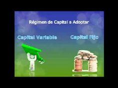 Las Sociedades Anonimas - YouTube